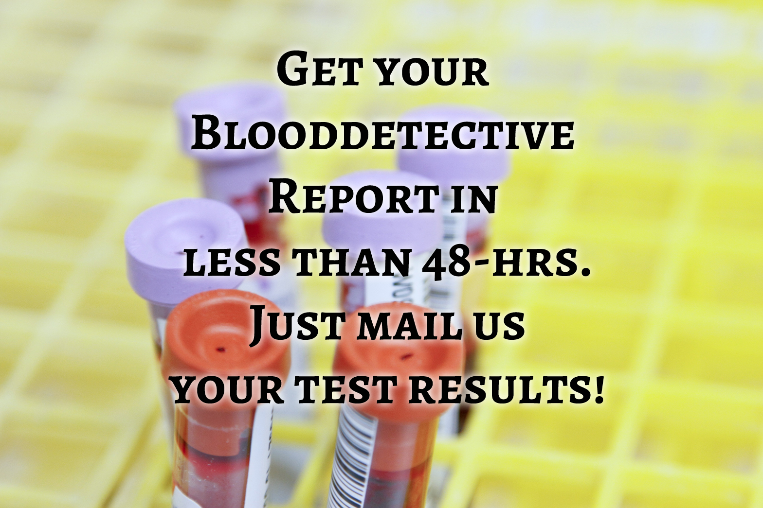 Get your report in less than 48 hours